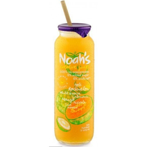 NOAH'S - SMOOTHIE - APPLE, ROCKMELON & WHITE GUAVA - 1 CARTON OF 12X260ML