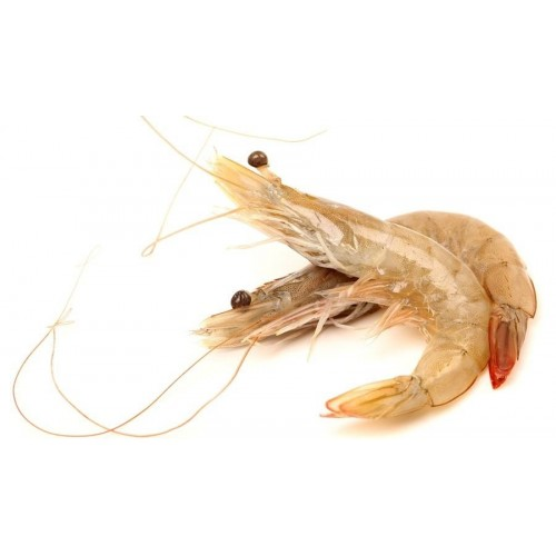 Aust. Wild Caught Banana Prawns 10/20 (1kg)