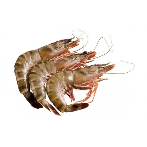 Aust. Wild Caught Tiger Prawns U10 - *select weight