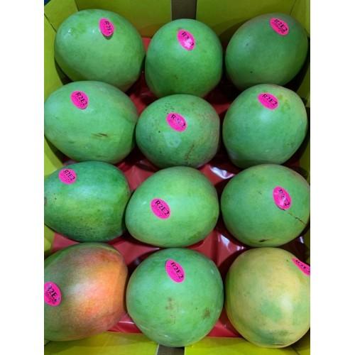 R2E2 Mangoes XL (Australia)