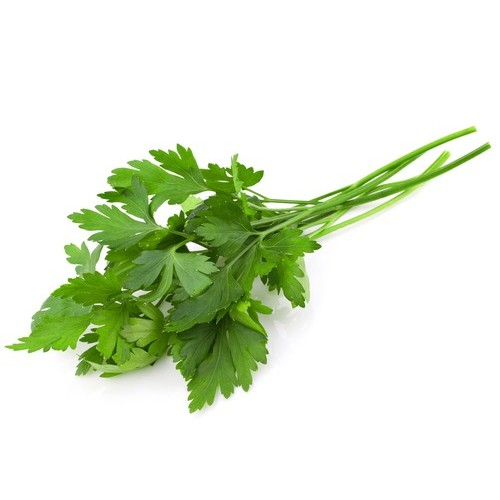 Herb - Italian Parsley, Australia (Punnet)