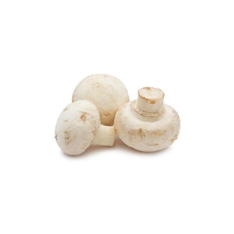 Fresh Australian Mushrooms - Button